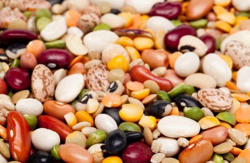 Come usare i fagioli in 8 ricette vegan