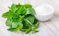 Un dolce sostituto: la stevia in cucina