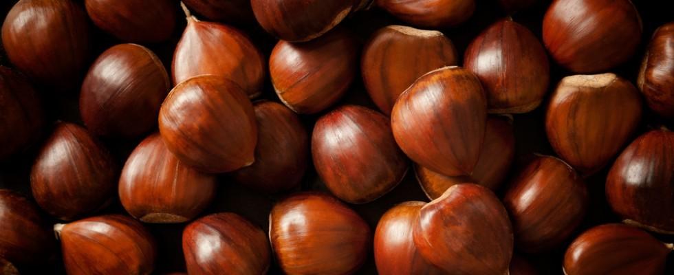 Scatta l'allarme: sarà un autunno senza castagne?