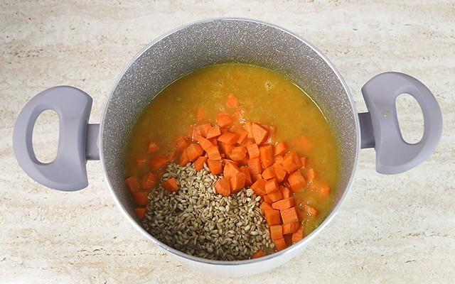 zuppa di carote (4)