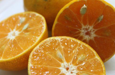 L'olio aromatizzato all'arancia, come farlo in casa