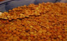 Il tempo di cottura delle lenticchie nella pentola a pressione: ecco alcuni consigli