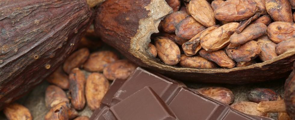 Preparare il cioccolato dalle fave di cacao, la strana moda di TikTok
