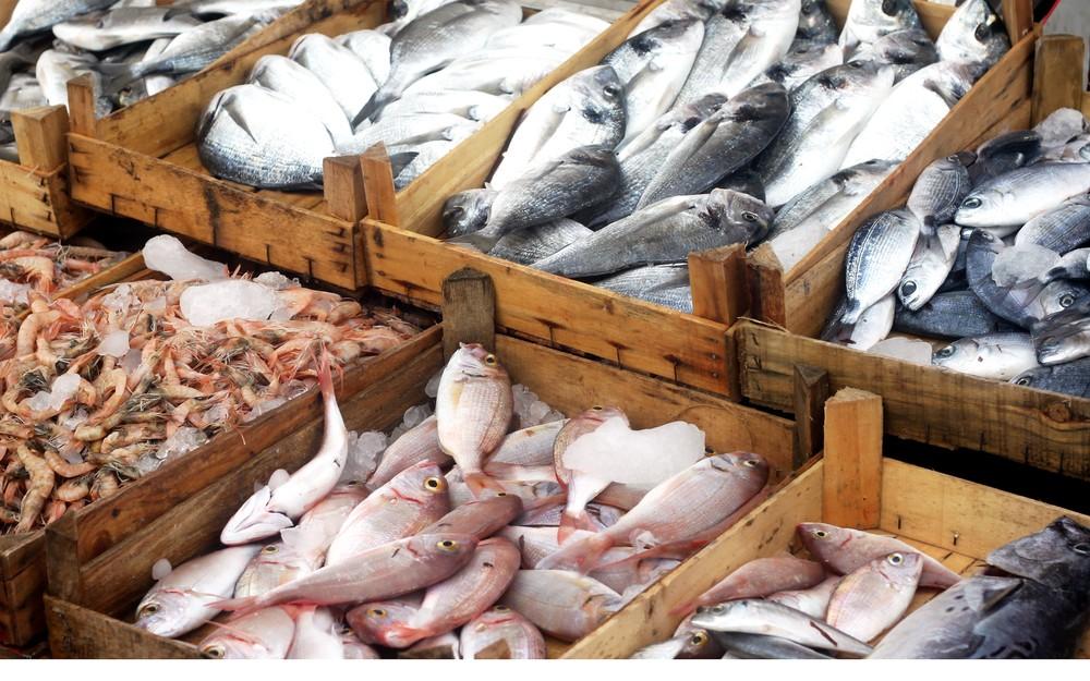Genova: dove comprare il pesce buono?   Agrodolce
