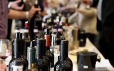 Terre di Toscana: il buon vino in Versilia