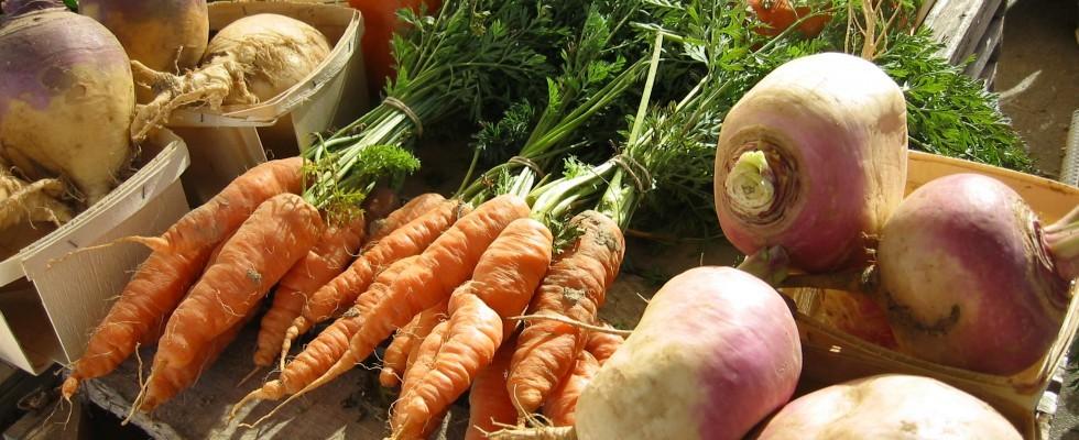 30 anni di Slow Food: le iniziative