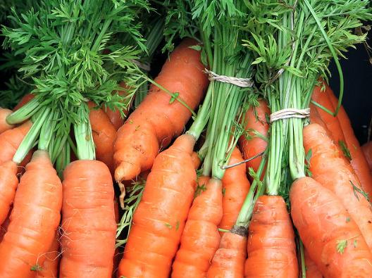 Come cucinare le carote facilmente senza sbagliare