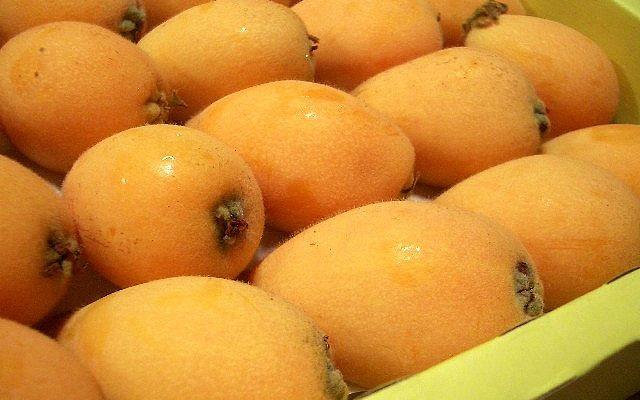 Le nespole in 5 ricette dolci da fare in casa