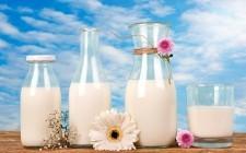 Non solo vaccino: quale latte scegliere?