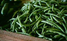 La ricetta di gamberetti e fagiolini verdi per un secondo leggero
