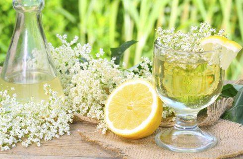 I fiori commestibili, ecco l'elenco di quali si possono mangiare
