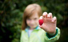 5 ricette con la frutta estiva da preparare ai bambini