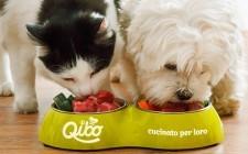 Qibo: a Roma la rivoluzione del pet food