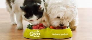 Qibo, a Roma la rivoluzione del cibo per animali