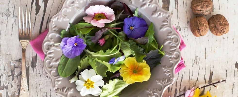 Dal giardino al piatto: i fiori eduli da usare in cucina