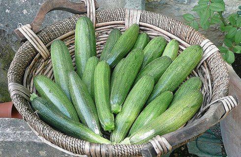 Il gratin di zucchine e fontina facile da preparare