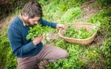 Foraging: l'arte di cogliere erbe