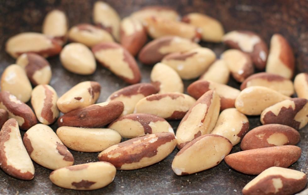 18 tipi di semi oleosi e le loro proprietà - Foto 8