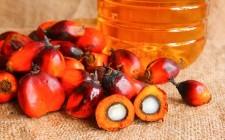 Coop dice addio all'olio di palma