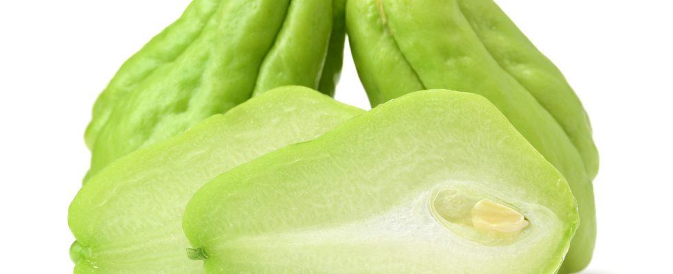 Le zucchine spinose in 5 ricette facili da fare
