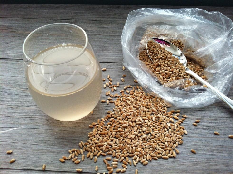 10 cibi fermentati che aiutano a sgonfiare la pancia - Foto 1