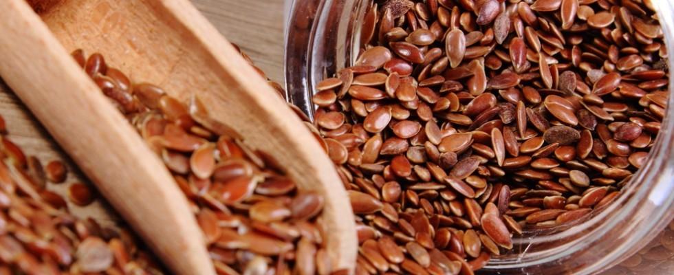 I semi di lino: cosa, come e perché?