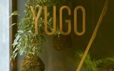 Yugo, Roma