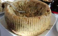 Il caso del Casu Marzu, formaggio sardo
