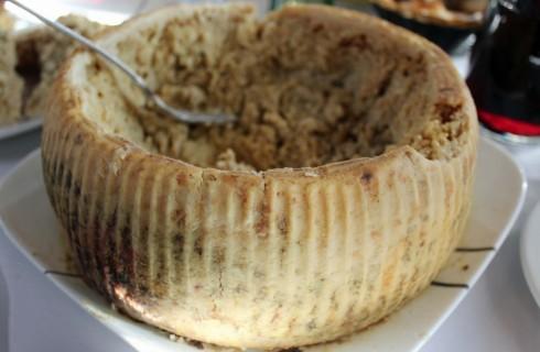 Casu marzu: il formaggio più pericoloso al mondo?