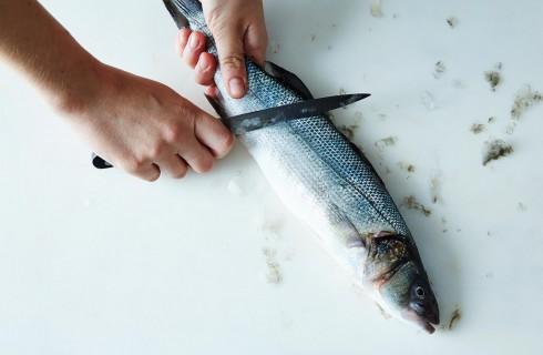 How to: come squamare il pesce