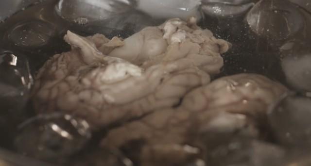 cervello fritto 04