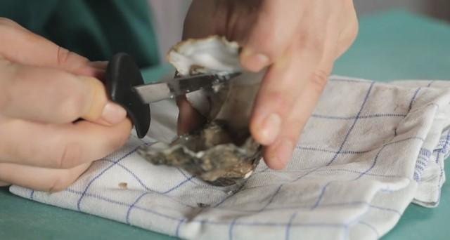 come aprire le ostriche 05