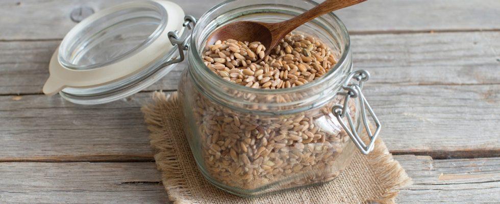 La ricetta del farro allo zafferano per un pranzo sano e leggero
