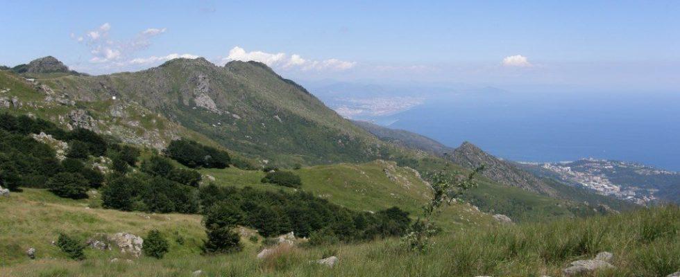 Itinerario gastronomico a Imperia: la Val Nervia