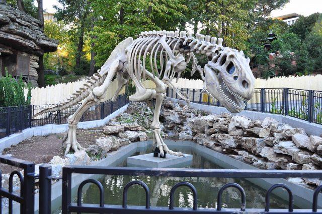 dinosauro-luneur