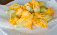 Fiori di zucca in padella, i consigli per cucinarli e la ricetta facile