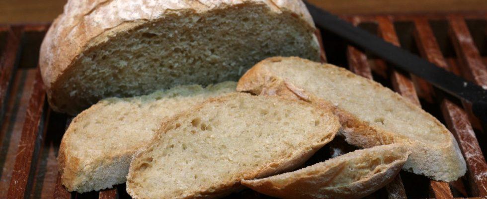 Pane pugliese: saporito e versatile