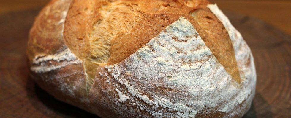Pane con farina manitoba fatto in casa