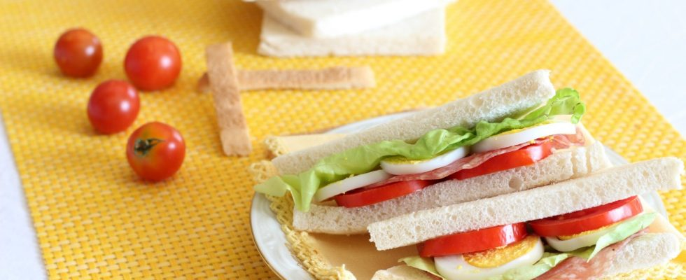 Pane per tramezzini senza lattosio