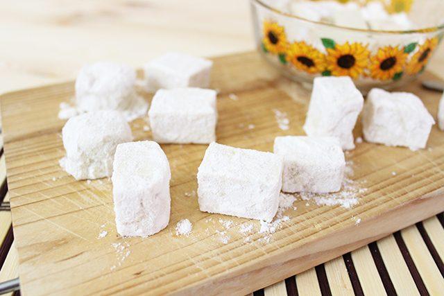 agadeshi-tofu-foto2