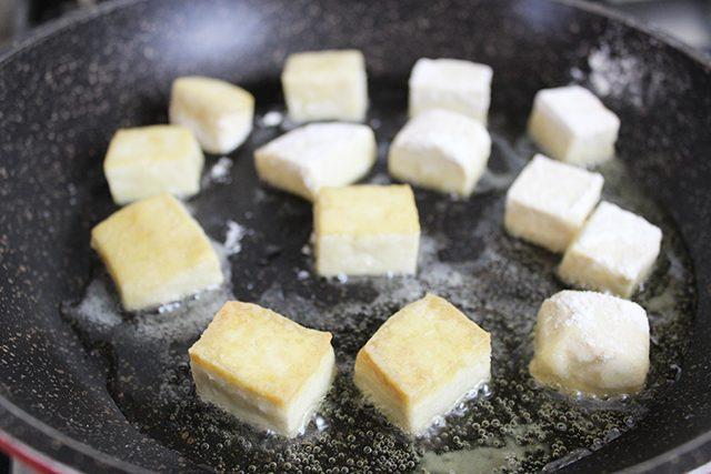 agadeshi-tofu-foto3