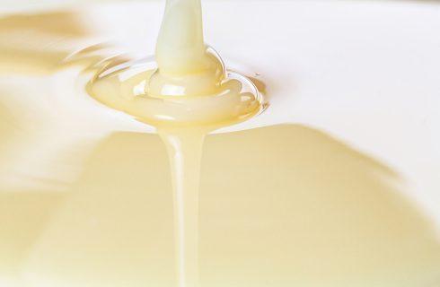 Latte condensato, evaporato o liofilizzato?