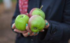 13 cibi che non possono mancare nella dieta di ogni donna
