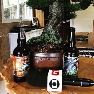 La birra IPA che si produce con i bonsai