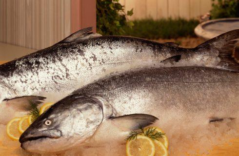 Come cucinare il salmone intero: 5 ricette facili