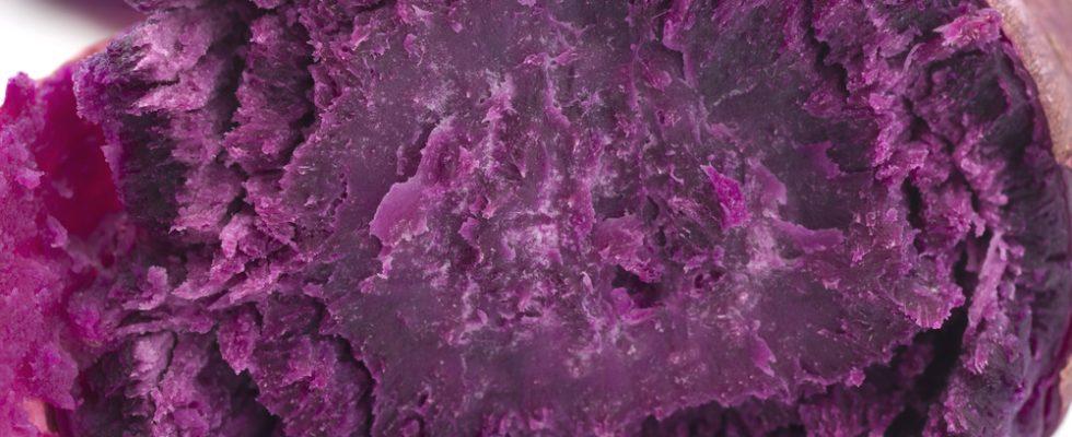 Ecco l'ube, il tubero viola che sta conquistando le cucine
