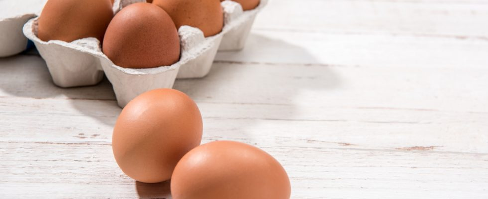 Pericolo uova contaminate anche in Italia