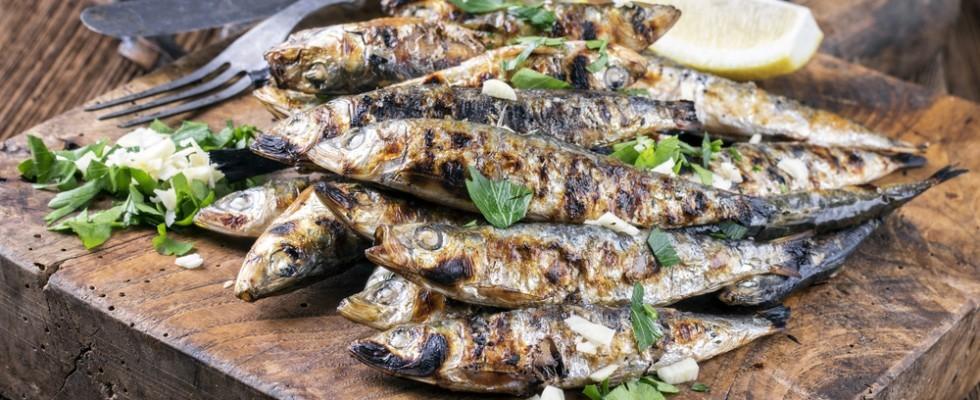Alici grigliate, specialità siciliana
