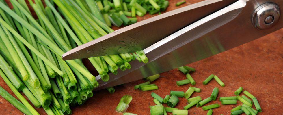 La riscossa delle forbici: perché usarle per tutto in cucina
