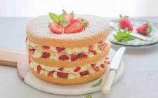 still-life-torta-millefoglie